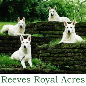 Reeves Royal Acres